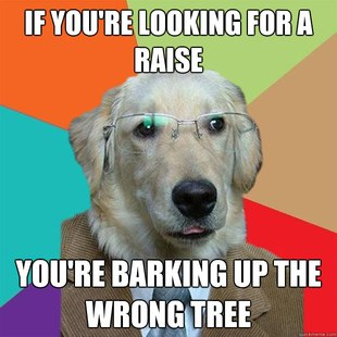 Best Of The Business Dog Meme 27 Pics Pleated Jeans
