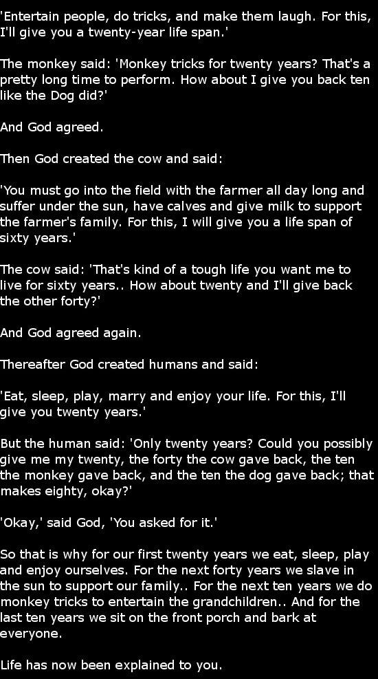 life-explained2