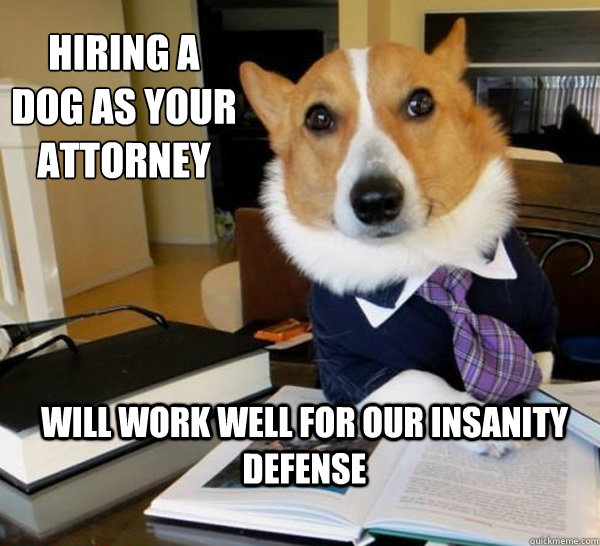 Lawyer Dog Meme (6)