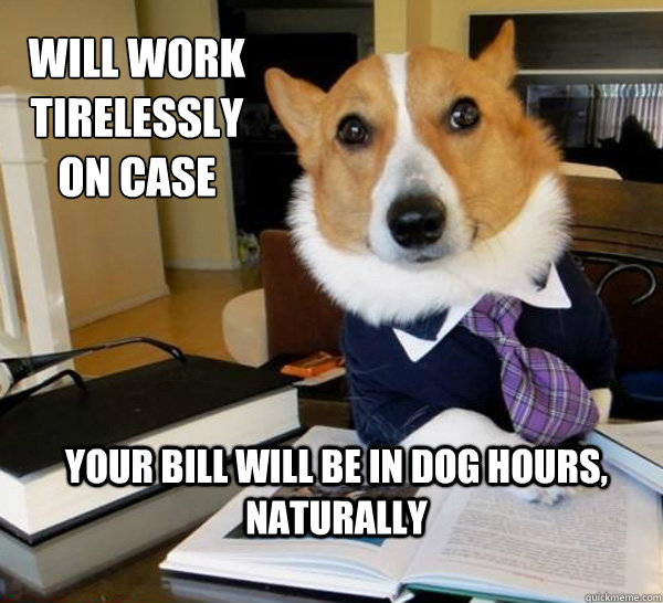 Lawyer Dog Meme (13)