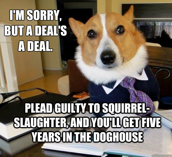 Lawyer Dog Meme (1)