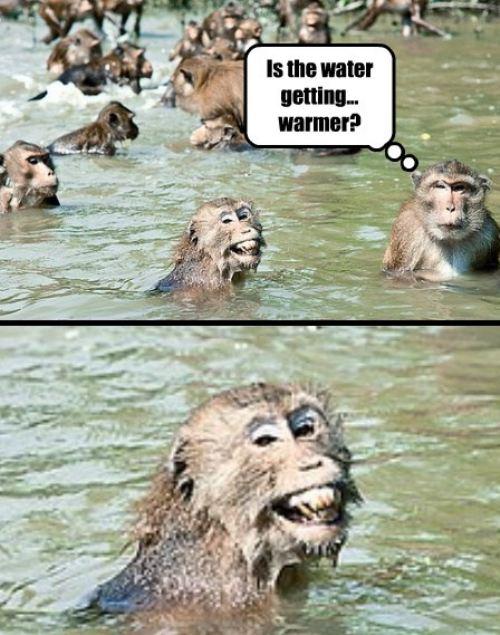 Funny Pic Dump (12)
