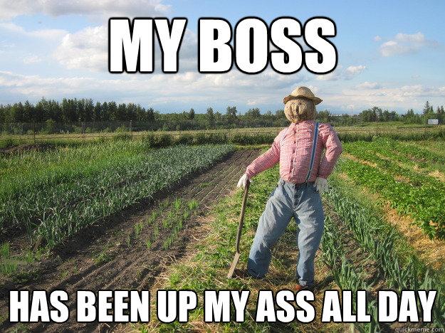 Scarecrow Farmer Meme (10)