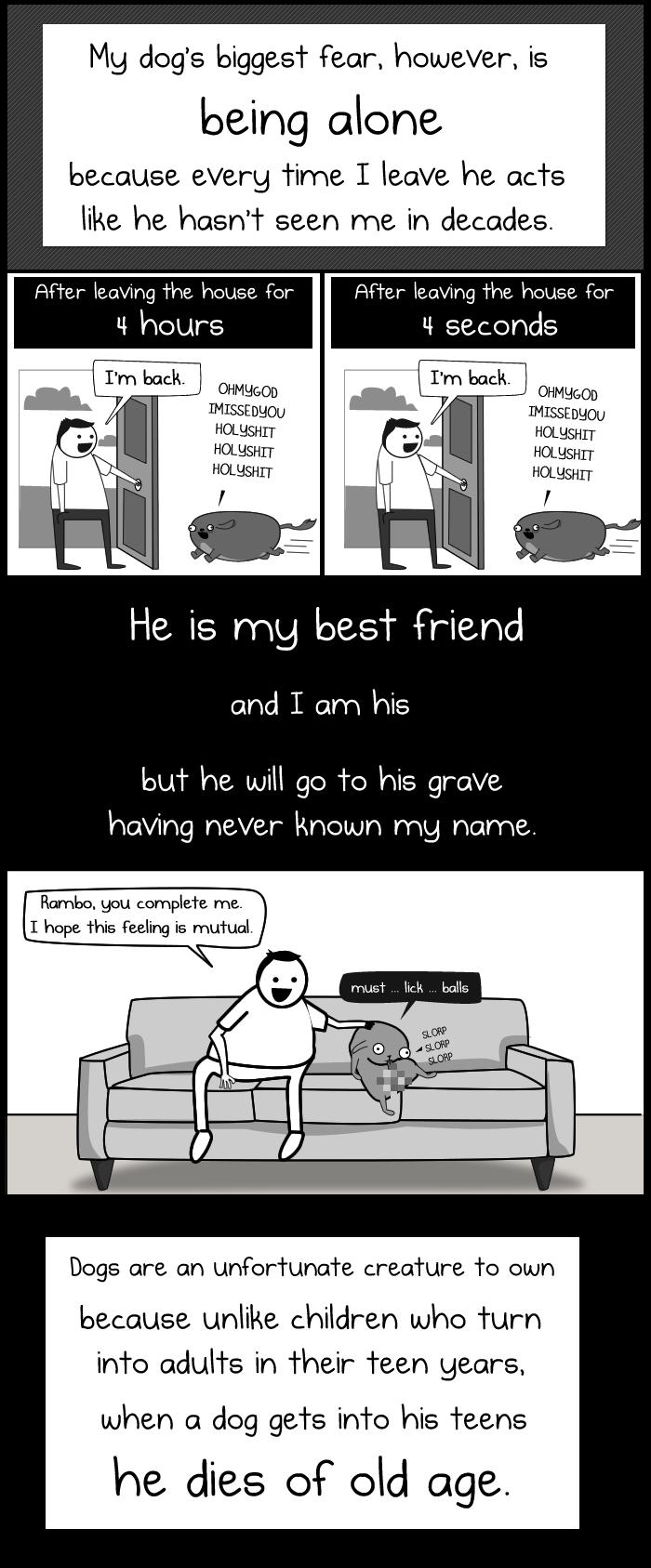 My dog the paradox by the oatmeal 3