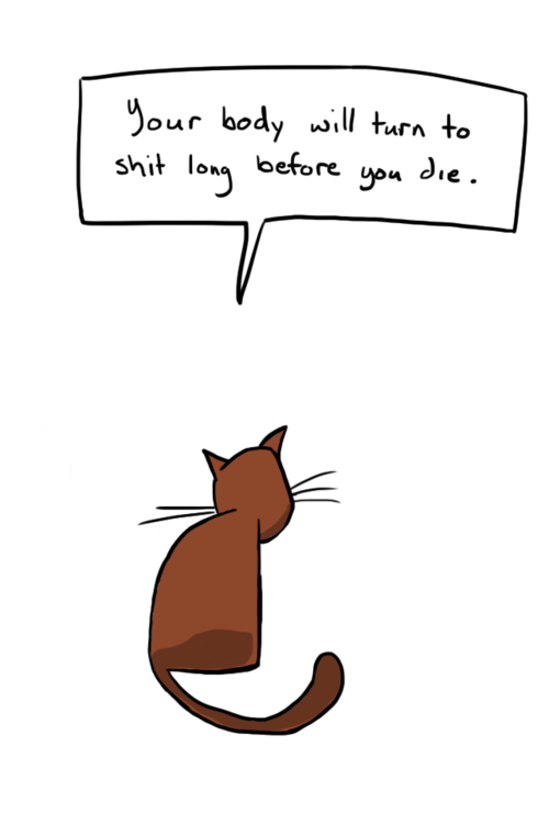 Hard Truths From Soft Cats 12 Pics Pleated Jeans