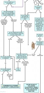 Are-you-good-at-following-a-flowchart2
