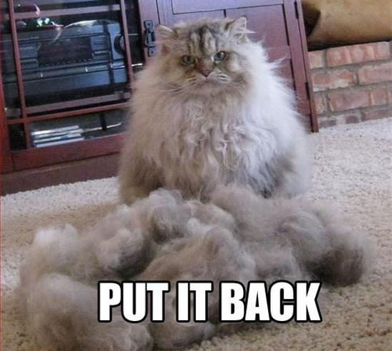 very hairy pussy happy ending massasje