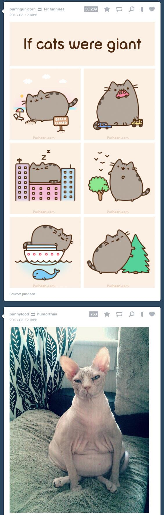 Tumblr Funny Posts 20 funny tumblr coincidences