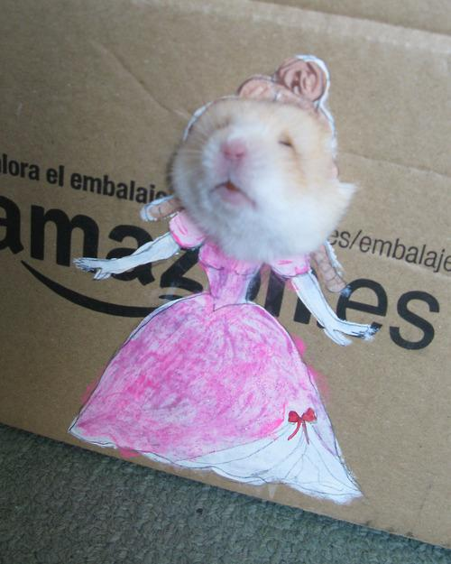 Adorable Hamster Dresses Up in Cardboard Cutouts (5 Pics)