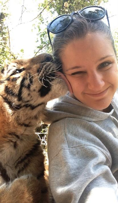 30 big cats caught being adorable