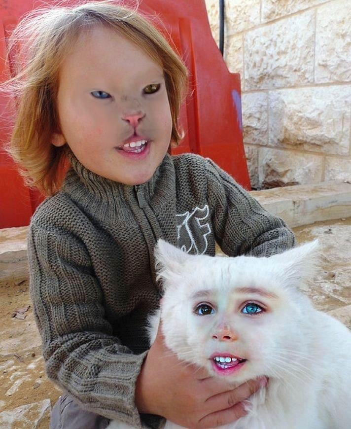 25 Horrifying and Hilarious Animal Face Swaps