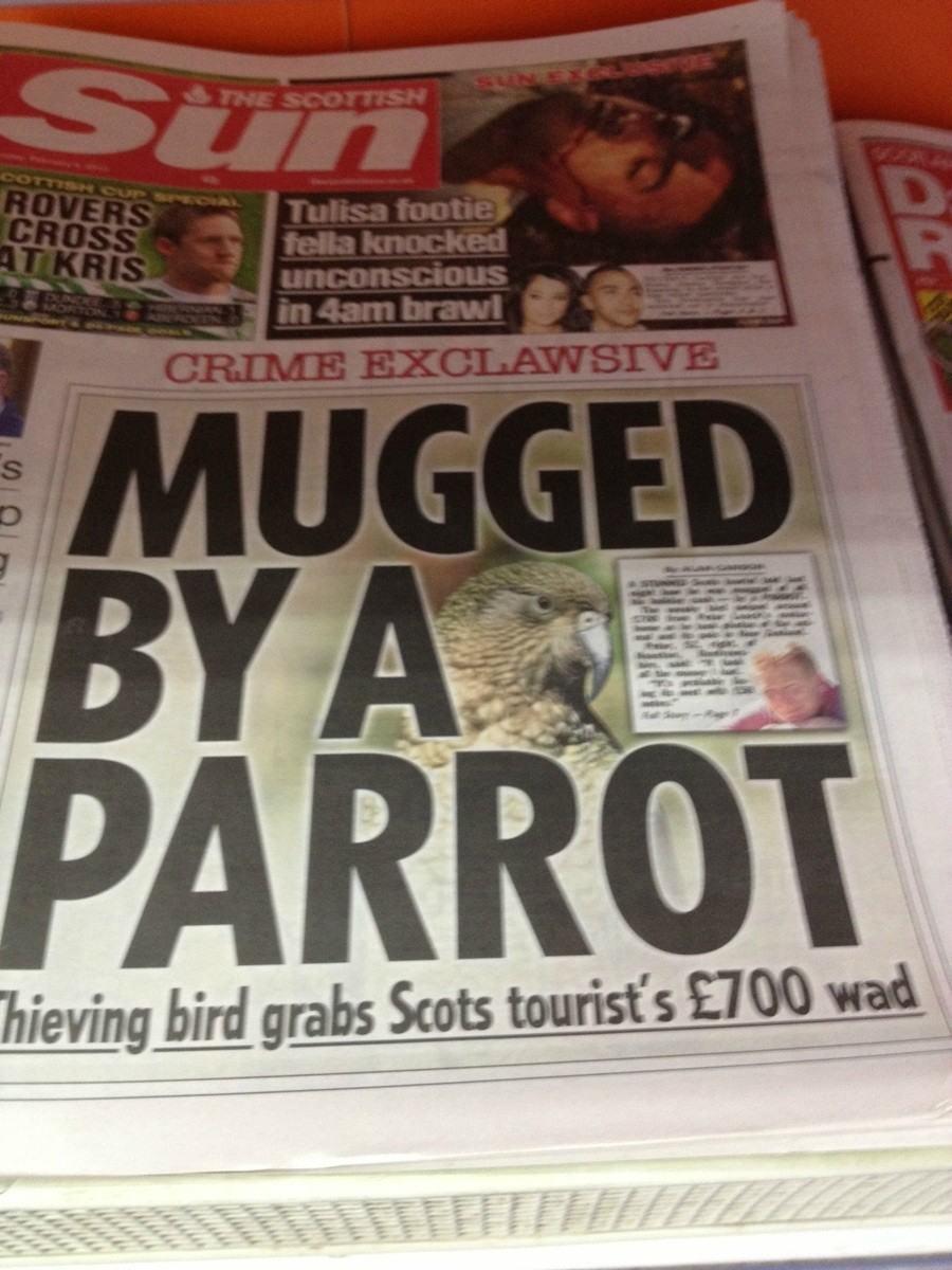Interesting headlines