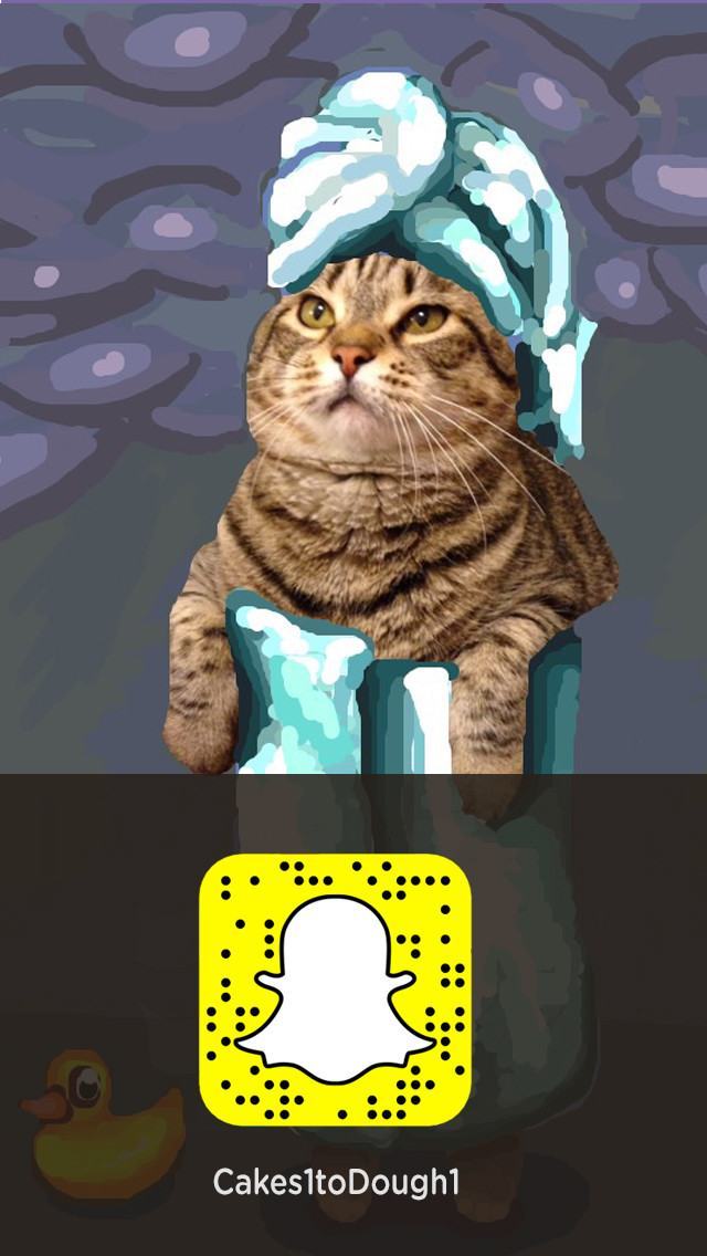 cats plus snapchat equals snapcat 17 pics pleated jeans