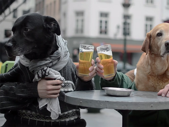 Dog with human hands - photo#47