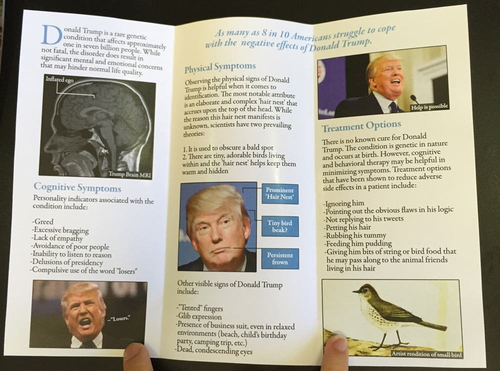 I Added This Fake Health Brochure About Donald Trump To A