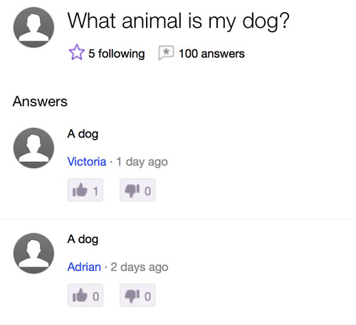 yahoo questions answers