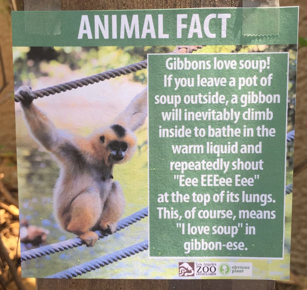 These Fake Animal Facts Were Posted at the Los Angeles Zoo ...