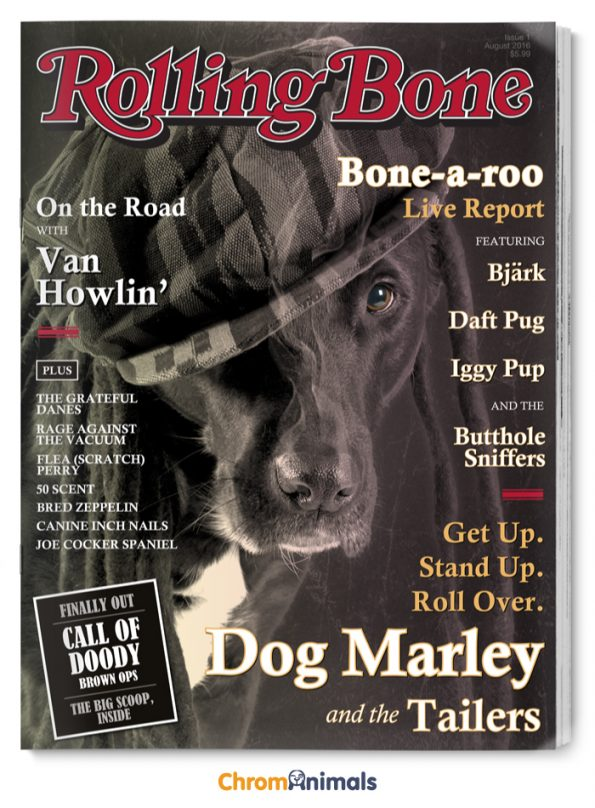 Popular Magazines Reimagined As Dog Magazines | Pleated Jeans
